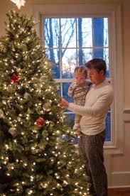 christmas tree our maple tree