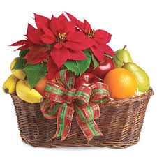 fruit delivery chicago fruit and poinsettia gift basket t1351 florist delivery in
