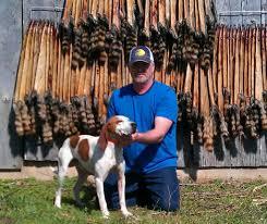 bluetick vs english coonhound ukc forums treeing walkers vs english