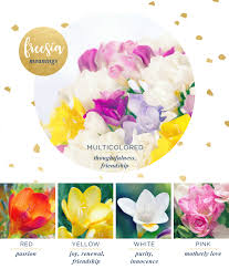 Flowers Colors Meanings - freesia meaning and symbolism ftd com