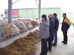 chambre agriculture vannes groupe va 2 resagri 56
