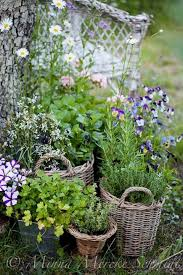 463 best gardening images on pinterest flowers garden places
