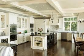 Outdoor Kitchen Cabinets Polymer Kitchen With An Island Design Lofty Vaulted Ceiling Single Blue