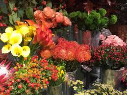 Flower Arrangement Basic Flower Arranging Supplies