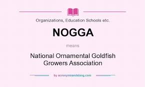 what does nogga definition of nogga nogga stands for