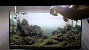 Aquascaping Rocks Tutorial Aquascape Nature Aquarium Tank Step By Step 2 Part By