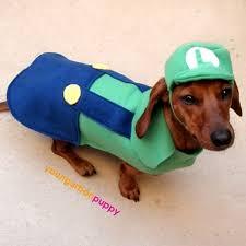 Weiner Dog Halloween Costumes Mario U0026 Luigi Dog Costumes Daphne Baby