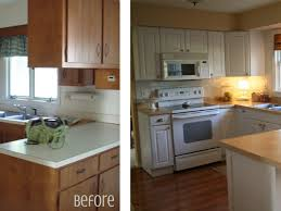 Kitchen Cabinet Ideas On A Budget by Kitchen Cabinets Amazing Cheap Kitchen Renovations Budget