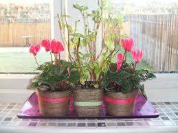 floral garage singapore diy flower vase v i v i a n t i decorate
