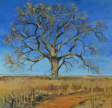 tree hugger america