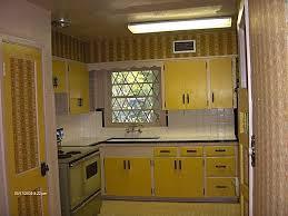 avocado green kitchen cabinets 1980s kitchen 1980s decor pinterest 1980s kitchens and modern