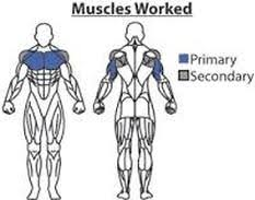decline bench press muscles dumbbell decline bench press peak fat loss and fitness