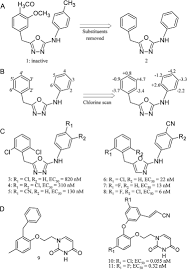 computational drug design strategies applied to the modelling of