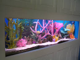 Aquarium Decor Ideas Unique Fish Tanks Ideas For Your Home Decoration
