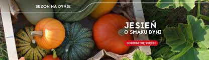 tesco polska supermarket hipermarket w twojej okolicy tesco