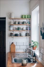 Narrow Kitchen Cabinet Solutions 100 Kitchen Cabinet Storage Units Blind Corner Cabinet Pull