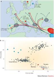 Genetic Maps Of Europe by Denisovan Asperger The Hyposocial Human