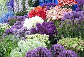 Backyard Ideas Uk Adding Flower Beds To Yard Landscaping Bed Design Plans Uk