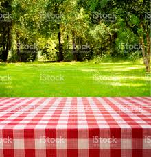 summer picnic in backyard park area trees woods table stock photo