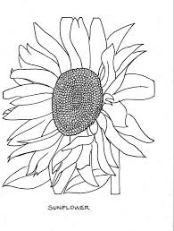 free printable flower coloring pages for adults u2013 free coloring pages