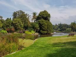 file royal botanic gardens melbourne panoramio 5 jpg