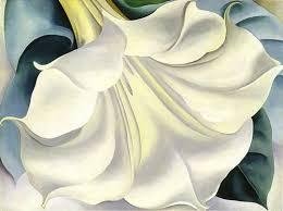 White Trumpet Flower - white trumpet flower by georgia o u0027keeffegeorgia o u0027keeffe google