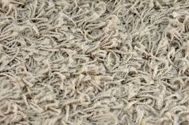 a close up shot of shag carpet stock photo picture and royalty