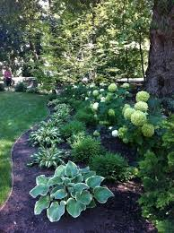 Backyard Flower Gardens by Best 25 Shade Garden Ideas On Pinterest Shade Plants Shade