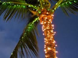 christmas palm tree christmas corona holiday1 florida lights