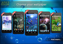 dolphin apk ur 3d dolphin shark hd for android free at apk here