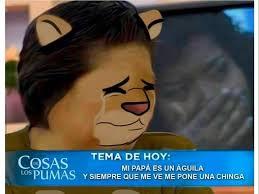 Memes De Pumas Vs America - memes de la vuelta de la liguilla futbol sapiens
