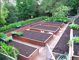 Veg Garden Ideas Backyard Vegetable Garden Design Ideas Popular Of Patio Vegetable