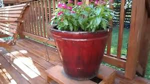 planting in my 5 large ceramic planter pots youtube