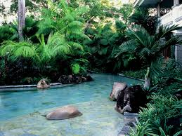 How To Make A Lazy River In Your Backyard Tropical Backyard With Lazy River Pool Houzz