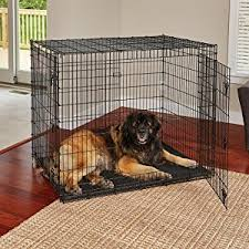 amazon black friday bird cages amazon com midwest solution series