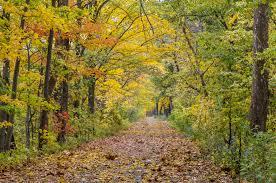 50 small towns beautiful fall foliage stunning