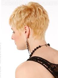 shag haircuts showing back of head 12 best hair cuts images on pinterest braids short hair and
