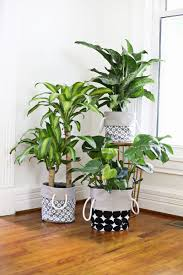 plant stand large planters modern plant pot holders indoors
