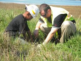 planting native grasses river star businesses program is a b4b networking partner