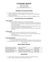 Free Functional Resume Builder The 25 Best Functional Resume Template Ideas On Pinterest
