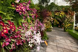 Botanical Garden Orchid Show Giveaway 4 Tickets To The Ny Botanical Garden S Orchid Show The