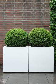 Large Planters Cheap by Best 25 White Planters Ideas On Pinterest Home Plants Kitchen