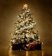 best christmas tree image christmas tree jpg the hunger wiki fandom
