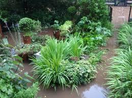garden drainage for flooded gardens in harrow hillingdon ealing