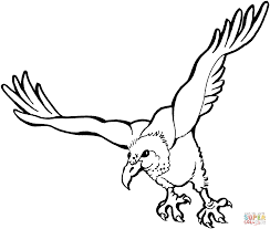 flying vulture coloring page free printable coloring pages
