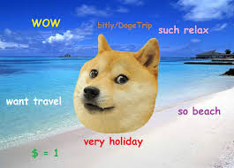 Trip Meme - doge trip the first doge themed crowdfunding caign such