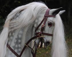 Rocking Horse High Chair 342 Best Rocking Horses Images On Pinterest Rocking Horses