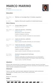Web Designer Resume Sample by Graphic Web Designer Resume Samples Visualcv Resume Samples Database