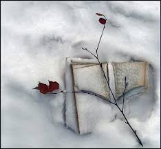 book in a snow winter nature background wallpapers on desktop