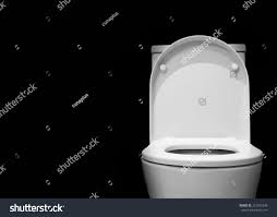 captivating white toilet with black seat pictures best idea home